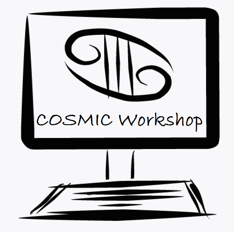 cosmic workshop